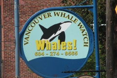 Vancouver Whale Watching Sign