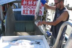 Fishmonger Bags a Sockeye Salmon